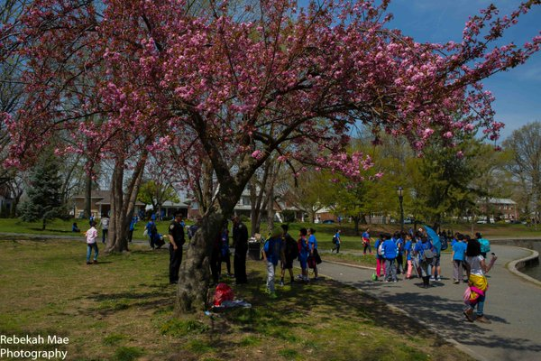 arbor and earth day at bowne park with ps32